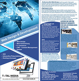 Flyers web design and development
